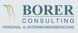 BORER CONSULTING GmbH