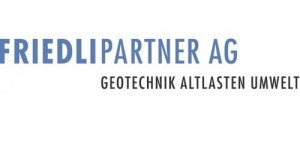 FRIEDLIPARTNER AG
